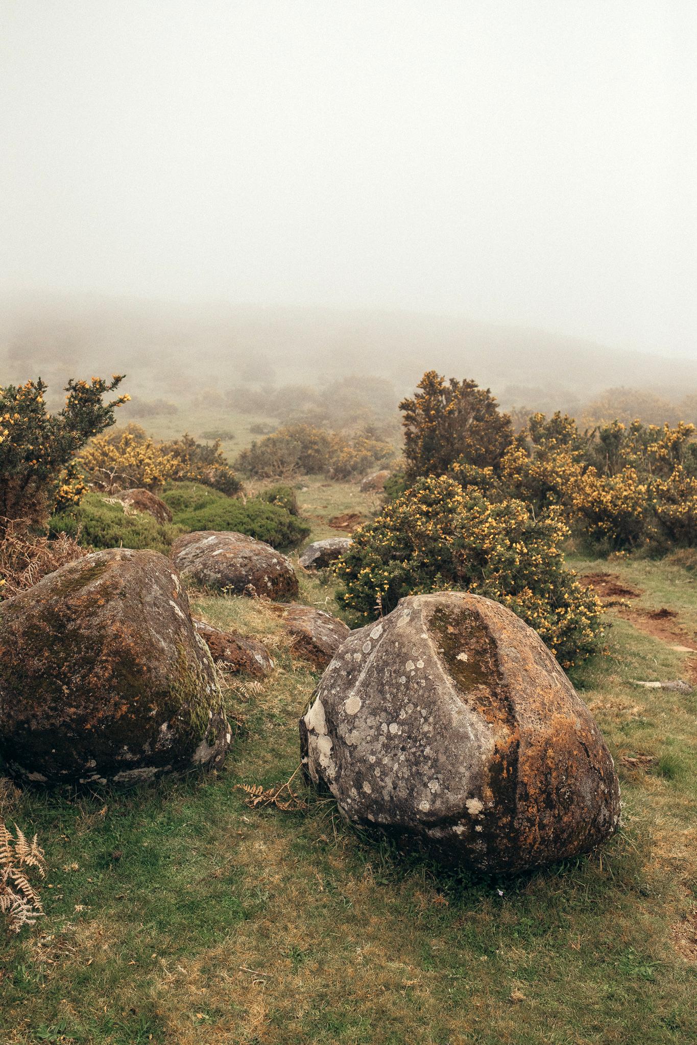 landscape Madeira cliff