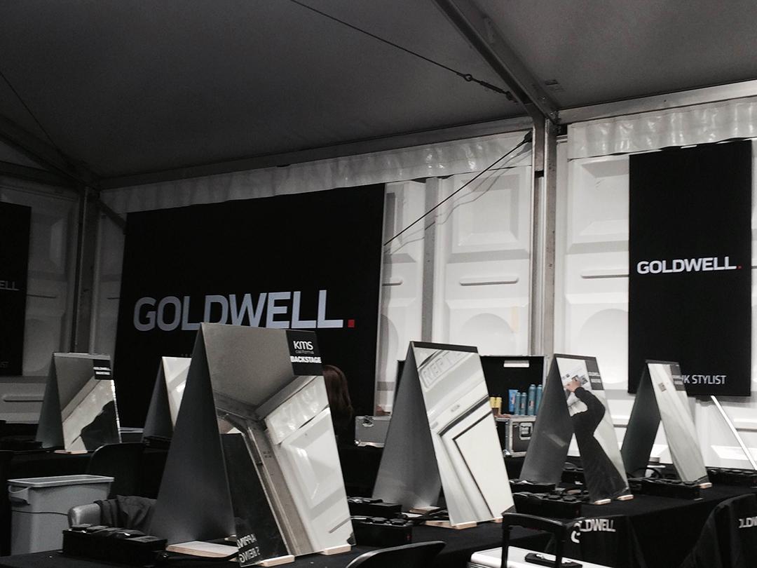 goldwell1